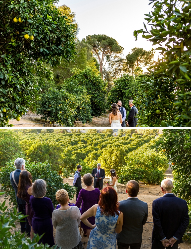 Maria and seth photography orange grove wedding 7